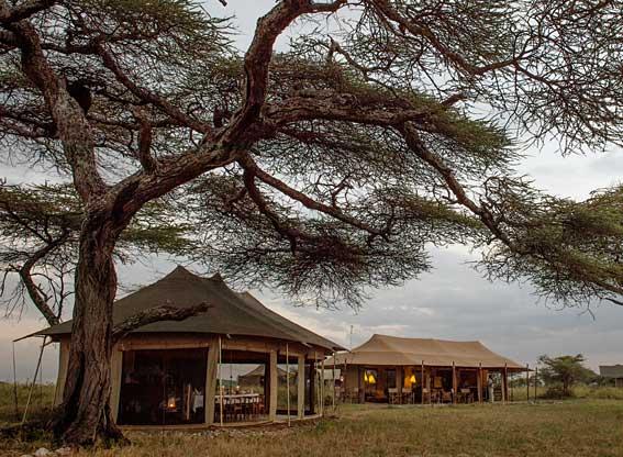 main-camp-at-dusk
