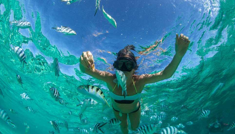 Snorkelling in Pemba Island