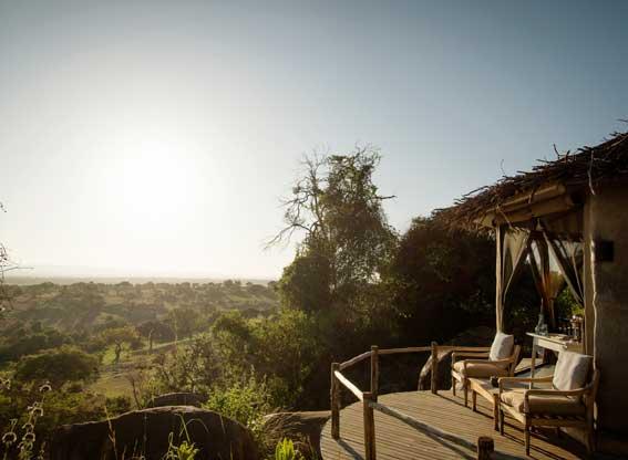 Lamai-Serengeti-G12