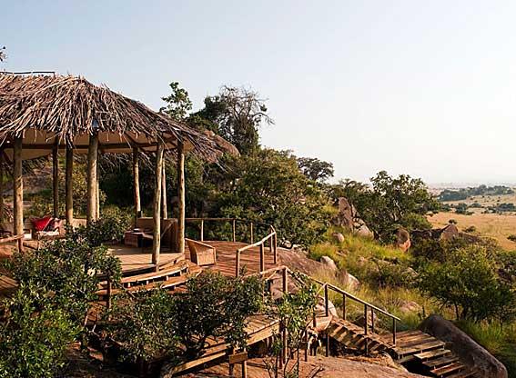 Lamai-Serengeti-G3