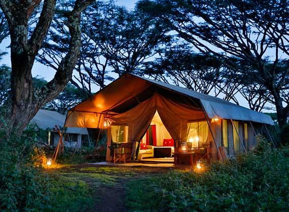 Lemala-Ngorongoro-R2