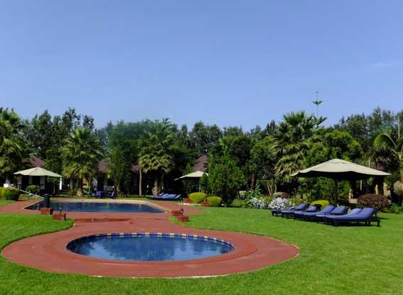 bougainvillea-pool