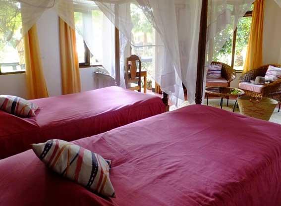 bougainvillea-twin-beds